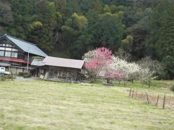 Tokigawa1_2