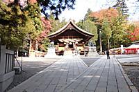 Suwako5
