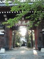 Niigataj