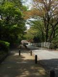 Okurayama_saka