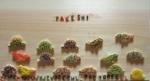 Pasutae_takeshi